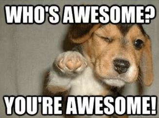 your awesome dog